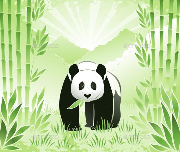 Meet the Bamboo Panda - Animals Characters