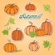 Pattern With Pumpkins - GraphicRiver Item for Sale
