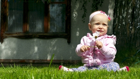 Seven Month Baby Plays On a Lawn With a Flower