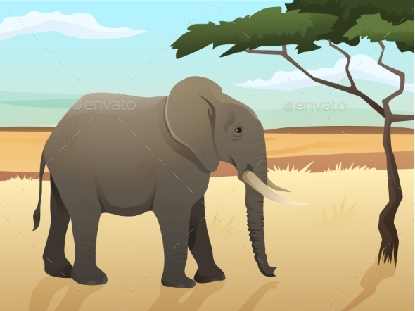 Beautiful Wild African Animal Illustration - Animals Characters
