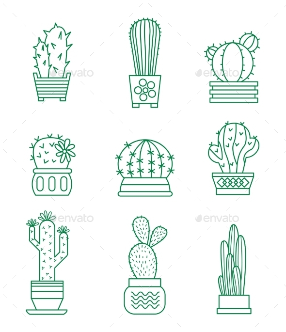 Set Of Vector Cactus Icons  - Flowers & Plants Nature