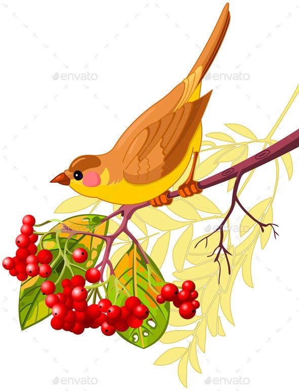 Autumn Bird - Animals Characters