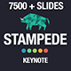 Stampede - Multipurpose Keynote Template - GraphicRiver Item for Sale