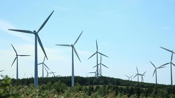 Wind Turbine Field 1