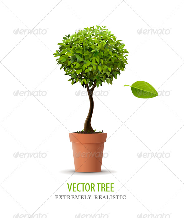 Realistic vector tree - Flowers & Plants Nature