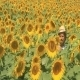 A Farmer Walking In Sunflowers - VideoHive Item for Sale