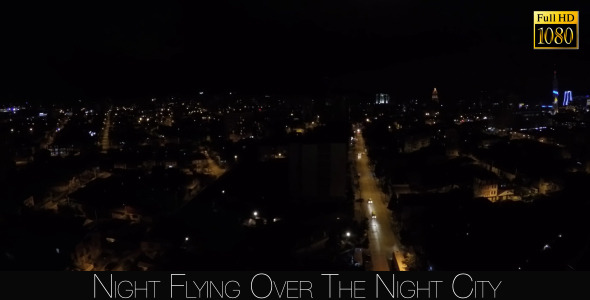 Night Flying Over The Night City 2