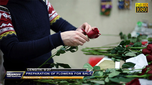 Preparation Of Flowers For Sale