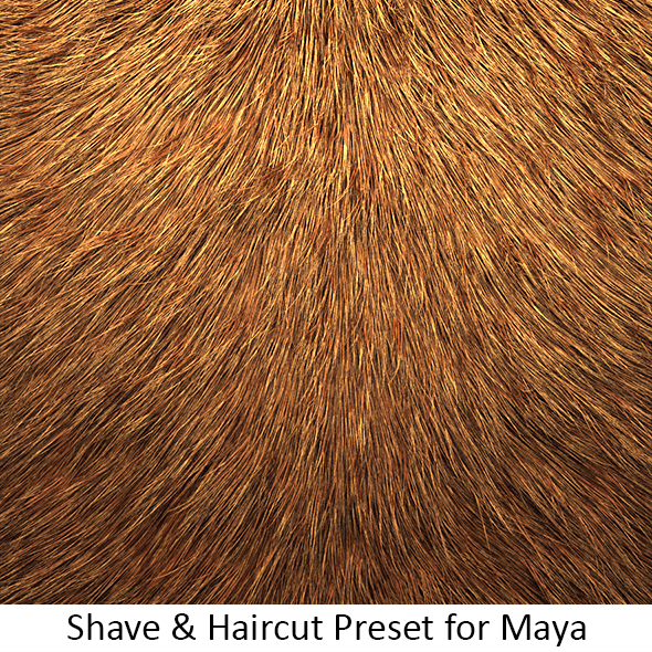 Shave Animal Fur2 - 3DOcean Item for Sale