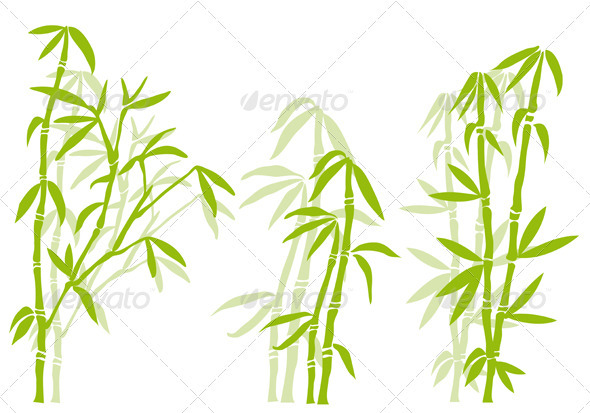 Bamboo Tree - Flowers & Plants Nature