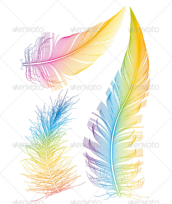 Colorful Vector Feathers - Organic Objects Objects