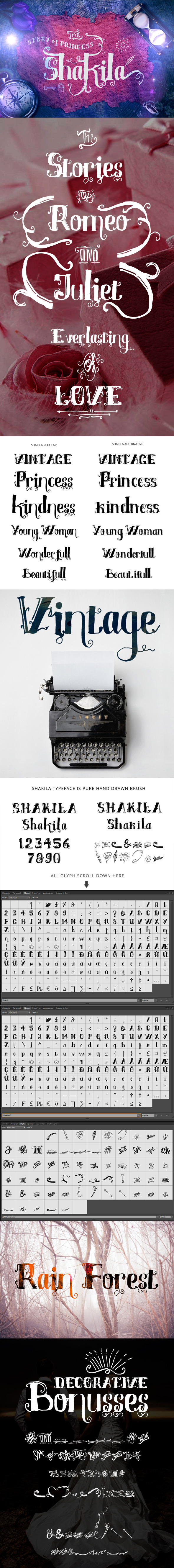 Shakila Typeface Hand Drawn Ornaments