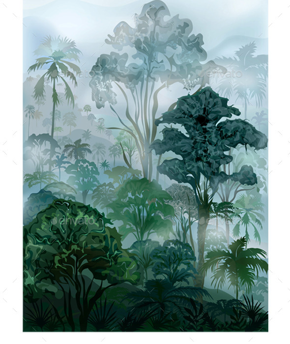 Tropical Rainforest - Landscapes Nature