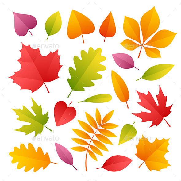 Set Of Colorful Autumn Leaves - Seasons Nature