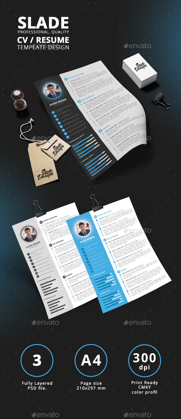 Slade Professional Quality Cv  Resume Template By Sladedesign