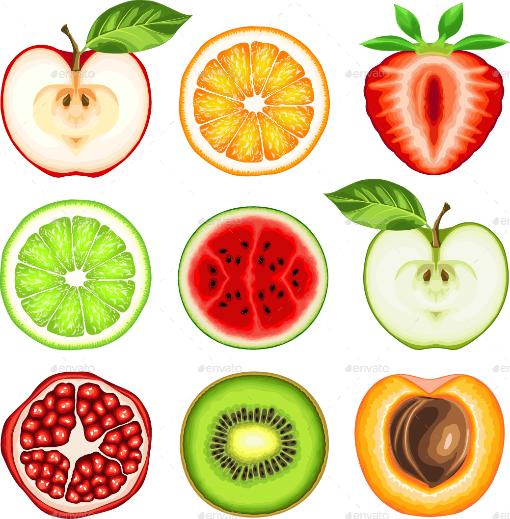 Fresh Fruit Slices By Ashmarka Graphicriver