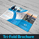 Tri-Fold Brochure - GraphicRiver Item for Sale