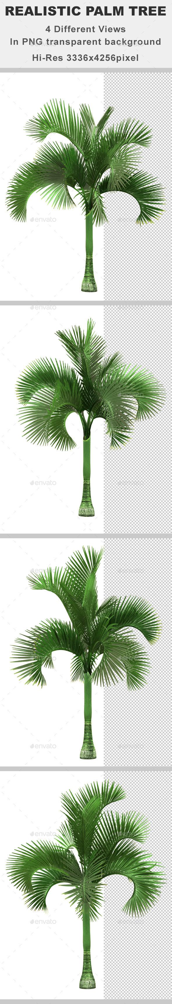 4 Realistic Palm Tree