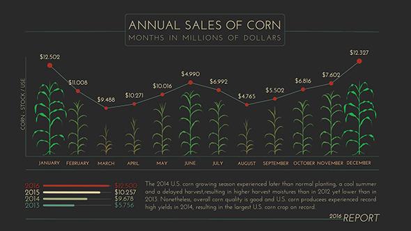 Growth Corn Plant Infographics