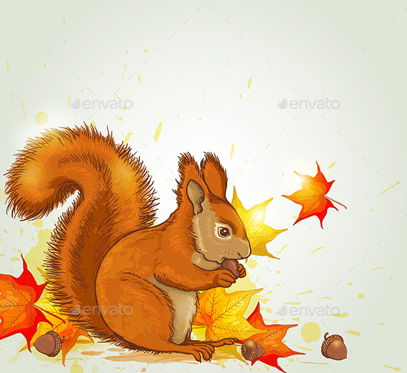 Squirrel and Maple Leaves - Animals Characters