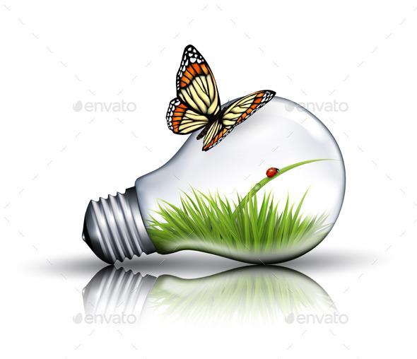 Eco Light Bulb - Landscapes Nature