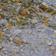 River Water Flow over the Stones - VideoHive Item for Sale