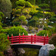 Red bridge in Japanese garden - PhotoDune Item for Sale