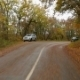 Car Moving In Autumn Forest Along Winding Road - VideoHive Item for Sale