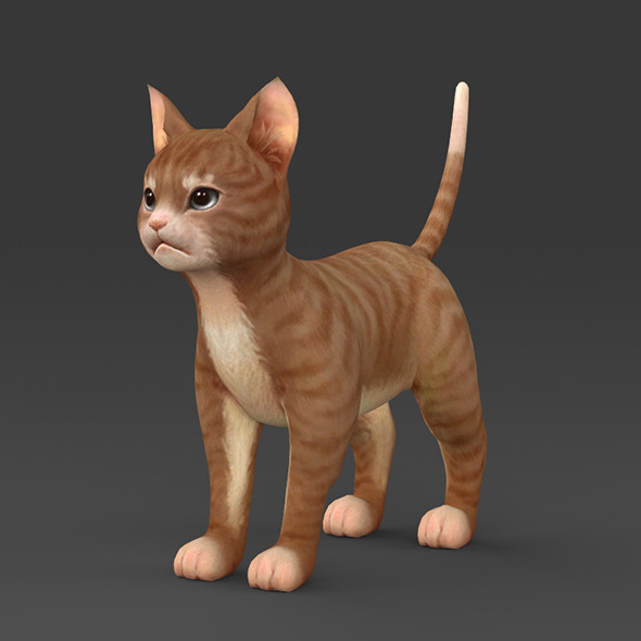 Brown Kitten - 3DOcean Item for Sale