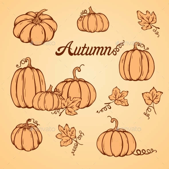 Pattern With Pumpkins - Backgrounds Decorative