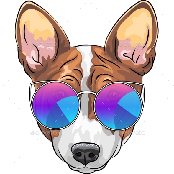 Hipster Serious Dog Basenji in Glasses