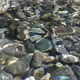 Water Surface on Rocks - VideoHive Item for Sale