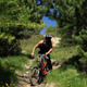 Downhill Bike - VideoHive Item for Sale