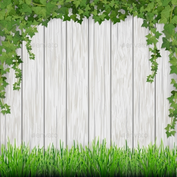 Grass and Hanging Ivy on White Vintage Wood - Flowers & Plants Nature