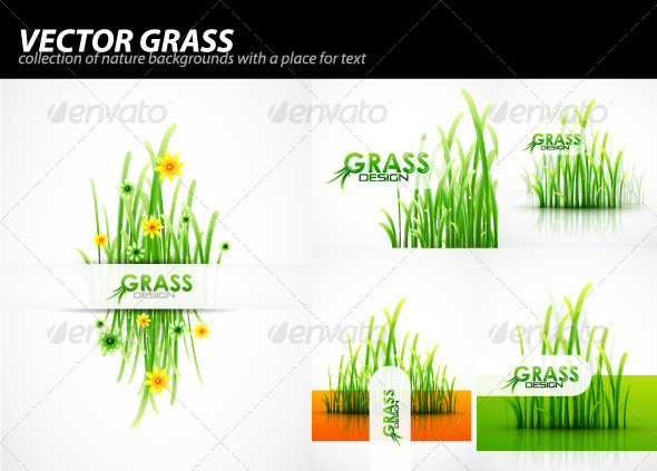 Grass background pack - Flowers & Plants Nature