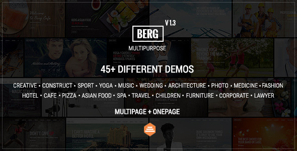 Berg Multipurpose One Page & Multi Page Theme