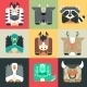 Set Flat Square Icons Of a Cute Animals - GraphicRiver Item for Sale