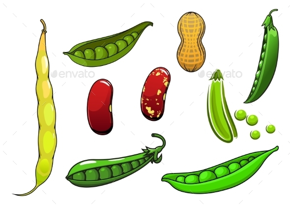 Cartoon Fresh Legumes And Vegetables