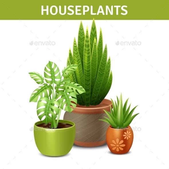 Realistic Houseplants Composition  - Flowers & Plants Nature