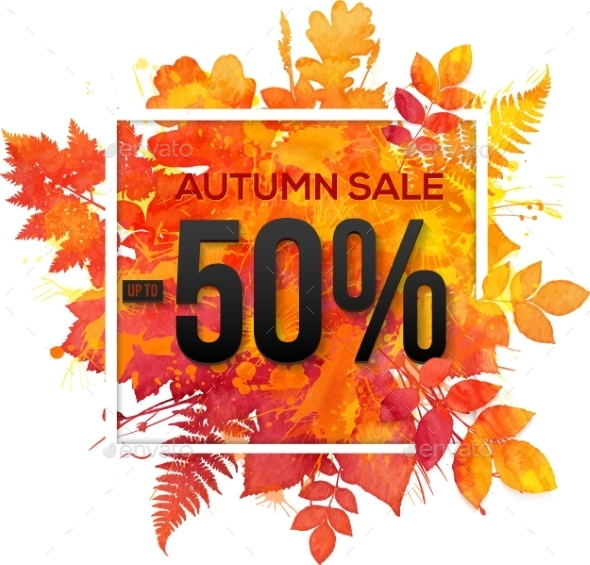 Autumn Sale 50 Percent Discount Vector Banner - Retail Commercial / Shopping