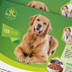 Pet Services Flyer Template - GraphicRiver Item for Sale