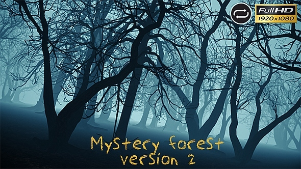 Mystery Forest 2