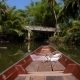 Cruising Boat On Rainforest River - VideoHive Item for Sale