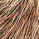 Shave Animal Fur3 - 3DOcean Item for Sale