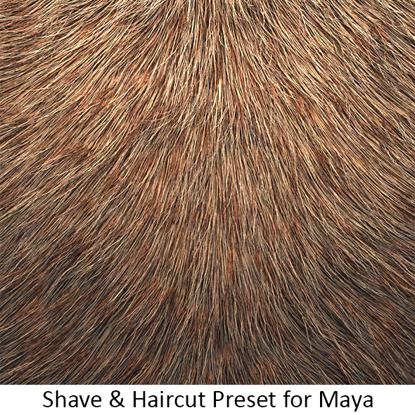 Shave Animal Fur3 - 3DOcean Item for Sale