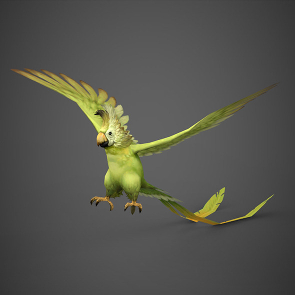 game ready 3d parrot bird 3docean item for sale