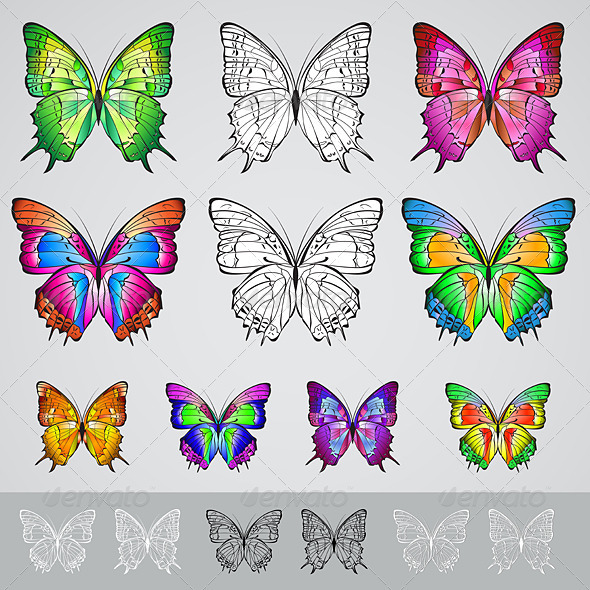 Set of different colored butterflies  - Characters Vectors