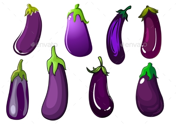 Organic Fresh Purple Eggplant Vegetables - Food Objects