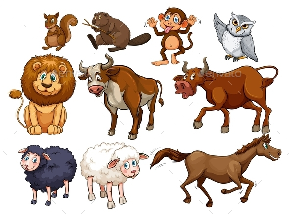 Wild Animals in Various Types - Animals Characters