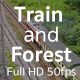 Train and Forest - VideoHive Item for Sale